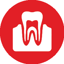 Smile Again Edmonds Dentist - Dental Implants Icon